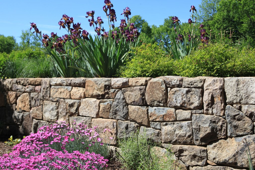 Stone-Retaining-Wall-with-Perennials-By-Wash-DC-in-Fairfax-County